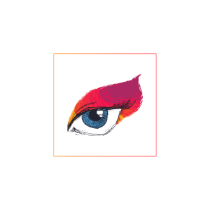 rohido icons (4)